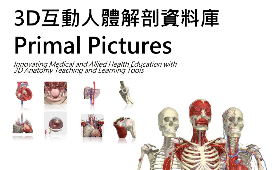 Primal Pictures Anatomy資料庫